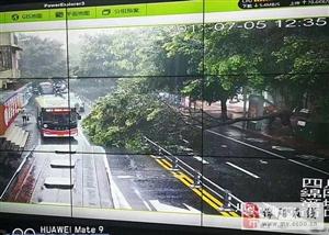 积水太深、大树倒塌、泥石流拦路……暴雨下,司机出行请小心谨慎