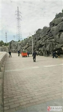 市灌区管理所 关于义务劳动活动开展情况