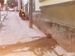 茶园巷污水改造工程应付了事劳民伤财