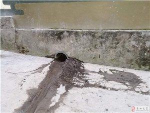 茶�@巷污水改造工程��付了事�诿���