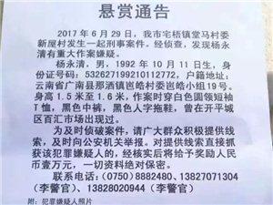 最新!鹤山警方悬赏通告的嫌疑人已被抓获!