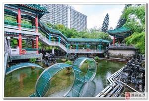 香港美景拍几片
