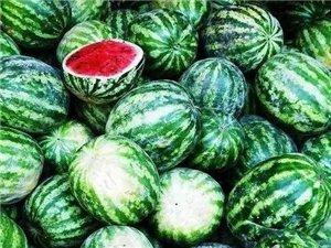 怎�犹暨x好吃的西瓜