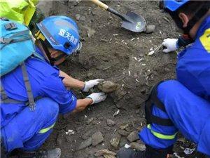 """""""为爱前行,一路有我""""福州大型慈善义演助力茂县受灾民众"""
