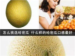 """夏季挑水果的必备""""武林秘籍"""""""
