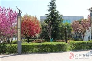 西安医护学院―成就天使梦想,医学类专业特招初、高中毕业生