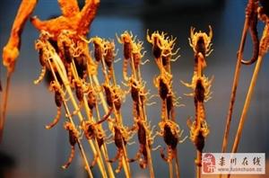"""栾川农村常见的""""洋辣子"""",现在已经卖到200元/斤了,你敢吃么?"""