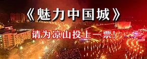 《魅力中国城》投票啦!作为凉山一份子,请为西昌投一票!