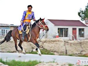 草原上的人马情:相伴一生的马与人