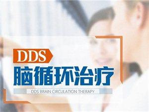 DDS脑循环治疗发育行为