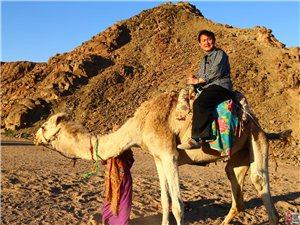 我行进在世界最大的撒哈拉沙漠中