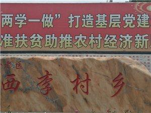 扶贫路上喜事多,陕州西李村乡上断村葡萄架下写报告!