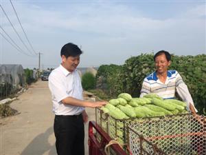 省耕肥总站领导来黄梅指导工作
