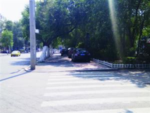 树下寻清凉扎堆乱停车文化大街人行道和自行车道违停多辆私家车
