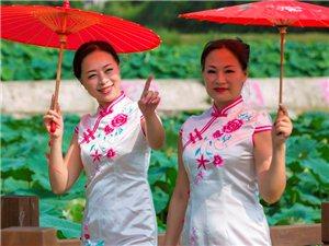 西部水产荷花节暨文化旅游节