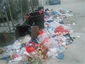 阜宁一处垃圾几天无人清理,垃圾桶东倒西歪,夏天到了真心难闻!