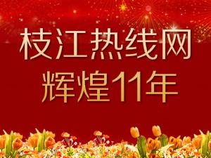 枝江热线网辉煌11年
