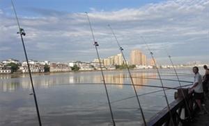 鸭子河边的钓鱼杆杆摆了一溜溜