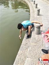 赏水湖美景・查水湖水质
