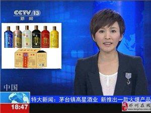 古酿坊酒业集团高星云上团队喝高星美酒 品五味人生全国震撼上市!