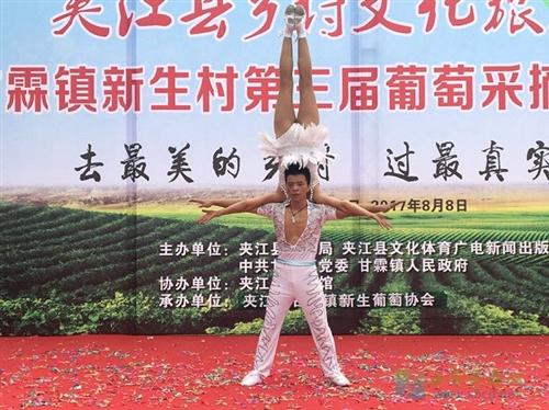 第三届葡萄采摘体验活动在新生村举行
