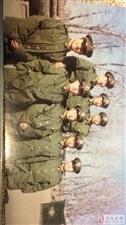 找1996年在北京的战友杨新伟