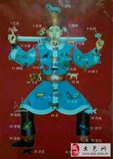 南邓字花hj28282288(隶属皇家百利字花)