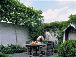 【京博・和苑】院子里的生活,原来可以这么美!