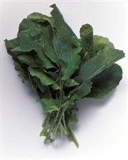 今天走在路上,看到地上有捆芹菜。