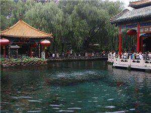 济南趵突泉再现水涌若轮景观