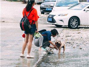 西河石家寨泼水狂欢节现场,快来感受一下这火热的现场气氛!