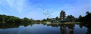 润扬观澜鹭岛――-临水而居,择水而憩,将生活过成别人羡慕的模样!