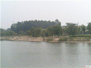 【翠岸深深处】拍临西县北湖有感