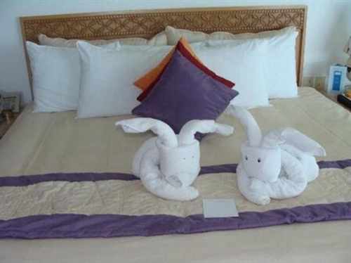 实拍:一对情侣退房后,酒店服务员受惊了!