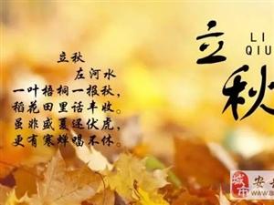 立秋收夏色,木叶动清风