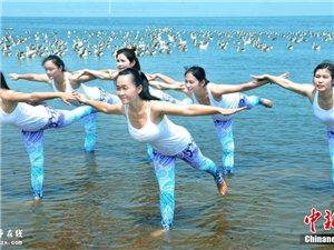 江西美女鄱阳湖畔上演水上人雁瑜伽秀