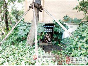 港利·上城国际小区一业主疑似触电身亡
