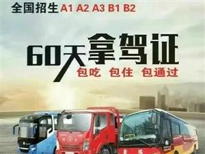 广州增驾A1A2A3B1B2,客运货运危运资格证