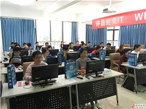 网吧写代码是怎样一种体验?威尼斯人官网鲤鱼IT电脑计算机软件培训中心
