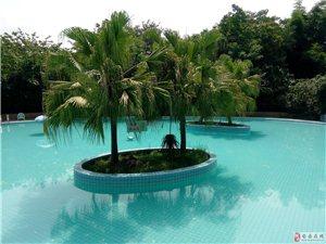 安岳金水岸游泳池绝佳水质环境,标准优美,让你玩得开心,放心!