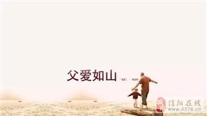 新集向日葵―信阳初秋最美的风景!