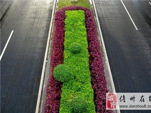 儋州市区路段亮丽了1397686134