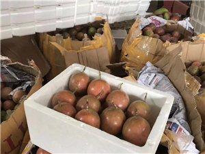 求老板收购:种了10多亩百香果,现每天都能摘200斤左右