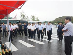 南阳市长霍好胜带领观摩团莅临mg电子游戏产业园调研指导