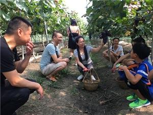 【晒出绿色生活】广汉市三水镇易家河坝绿色产业吸引八方客(图片)