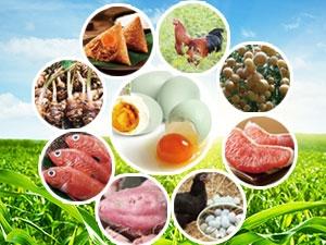 2017儋州九大特色农业品牌