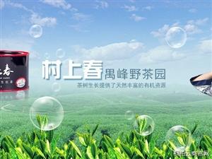 就打个广告,桐柏云商农产品特卖平台