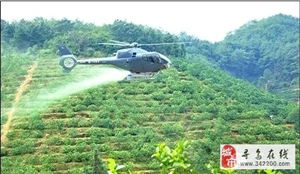寻乌:关于开展飞机防治柑橘木虱(黄龙病)的通告