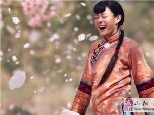 《那年花开月正圆》剧中的美食看看山阳有多少!
