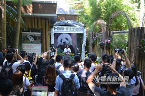 大熊猫巴斯悼念活动16日举行 遗体将被制成标本